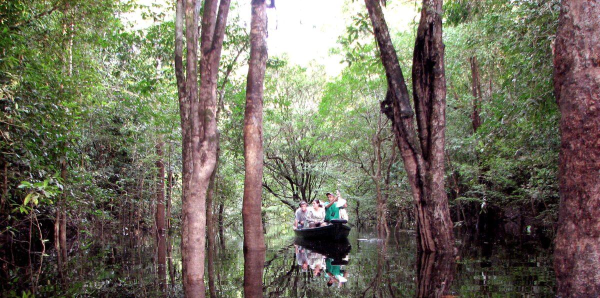viaje a la amazonía brasileña 5