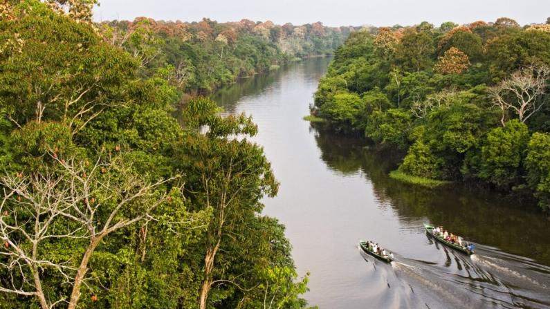 viaje a la amazonía brasileña 6
