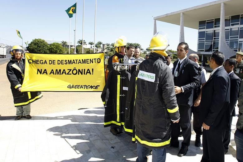 SELVA AMAZONICA BRASIL: ¿Por qué es muy importante para el planeta? 5
