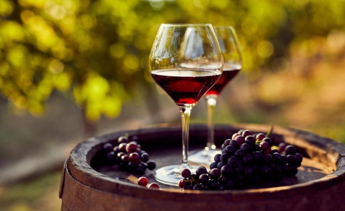 Enoturismo: Buscando el viaje a la mejor región vinícola del mundo - GEORGIA 3