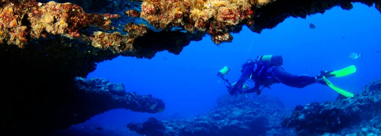 Dónde practicar buceo en las Islas Canarias 28