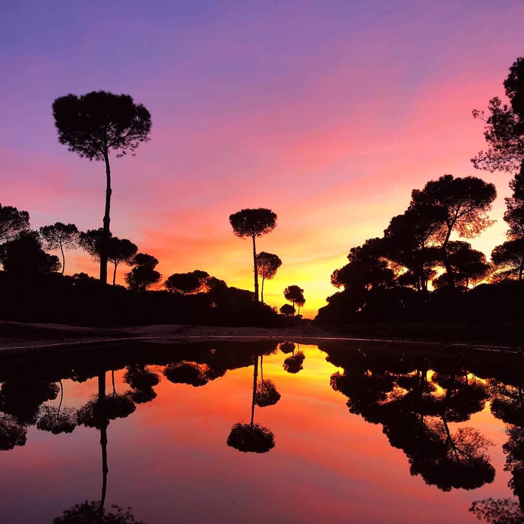 Hoteles para viajeros románticos - Ardea Purpurea Lodge -Villamanrique de la Condesa, Sevilla 2