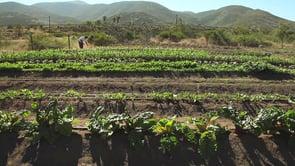 De viajeros por Baja California 2