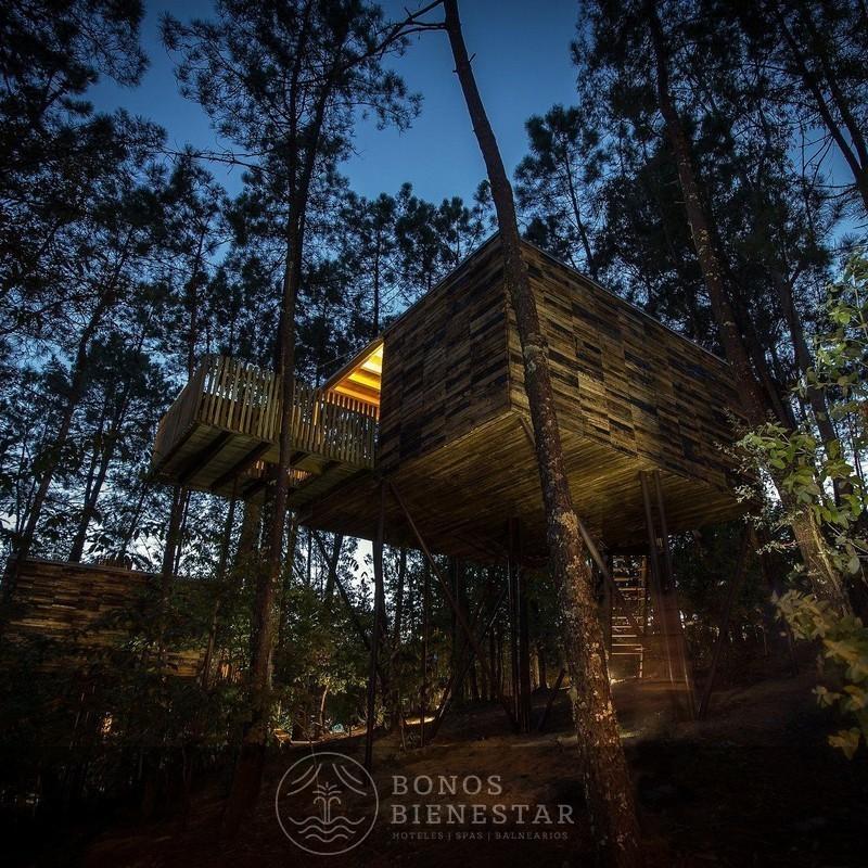 Bono Regalo en las Cabañitas del Bosque con Desayuno y Picnic en Outes 53
