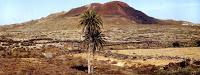 Que ver en Fuerteventura: Rally de La Oliva 2