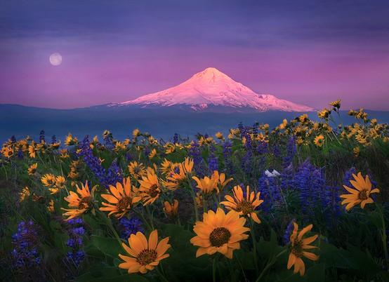 LA FOTO DEL DIA Columbia Hills, Washington State, USA 2