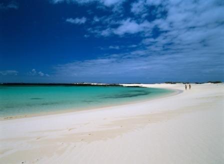 LA FOTO DEL DIA The Canary Island of Fuerteventura 2