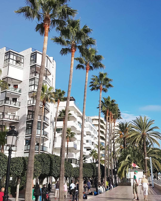 Consejos para visitar Marbella 4